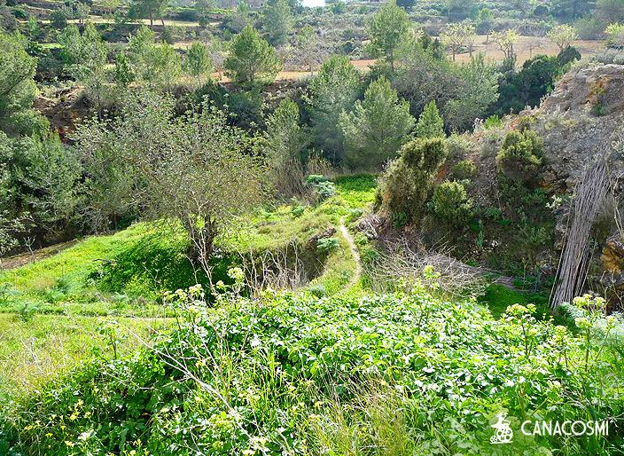 localizaciones ibiza formentera campo 8